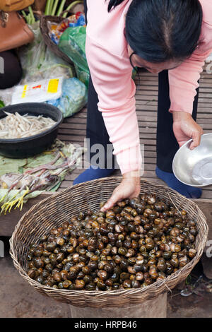 Snails for Sale at Psa Leu Market in Siem Reap, Cambodia - Stock Photo