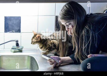 Teenage girl using and looking at smartphone sitting on kitchen counter top with pet Bengal cat next to her  Model - Stock Photo
