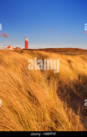 The lighthouse of the island of Texel in The Netherlands surrounded by tall sand dunes in beautiful early morning - Stock Photo