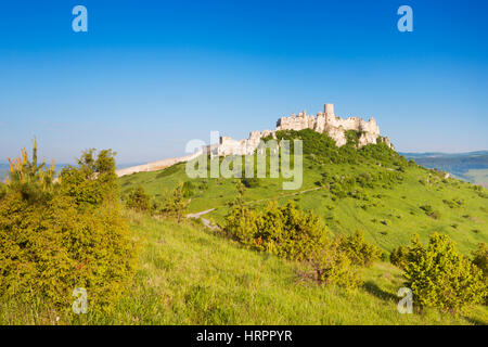 The ruined Spiš Castle in Slovakia on a bright and sunny day. - Stock Photo