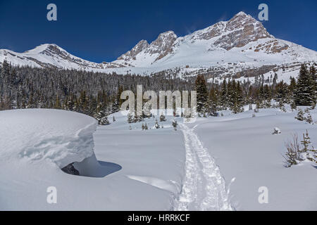 Winter Landscape on a Great Snowshoeing Trail near Lake Louise in Skoki area of Banff National Park Rocky Mountains - Stock Photo