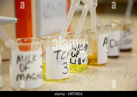 Beakers containing liquids for college students to use for experimentation - Stock Photo