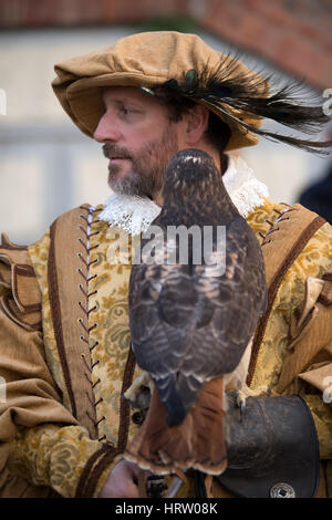 Falconry display at the medieval festival with various birds of prey in the historic city of Taggia in Liguria region - Stock Photo