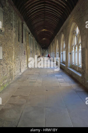 the cloisters at chichester cathedral in west sussex - Stock Photo