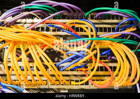 Patch panels, sockets, patch cables connected to the network equipment inside the rack of Data Centre. - Stock Photo