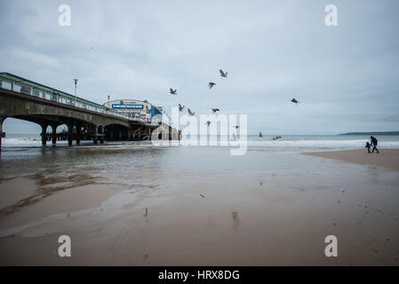 Pigeons fly into the sky as a man and a boy walk on the beach in front of Bournemouth Pier. Bournemouth, Dorset, - Stock Photo