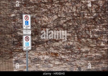 Vine covered stone wall and no parking signs - Stock Photo