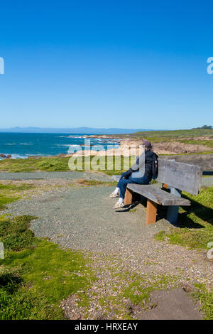 Coastal view from the Bluff Trail Montana De Oro state park central California USA - Stock Photo