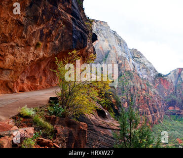 Narrow Path with Switchbacks at Angels Landing Trail, Zion NP, Utah, USA - Stock Photo