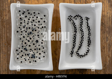Frog and toad spawn comparison. Eggs of common frog (Rana temporaria) (left) and common toad (Bufo bufo) (right) - Stock Photo