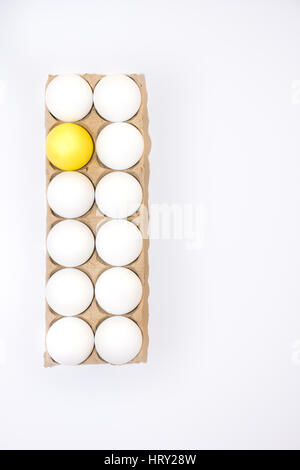 One Easter egg dyed yellow and eleven white hen's egg in a cardboard carton from above with white background and - Stock Photo