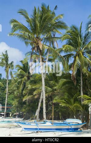 Palmenstrand, Boracay, Philippinen - palm beach - Stock Photo