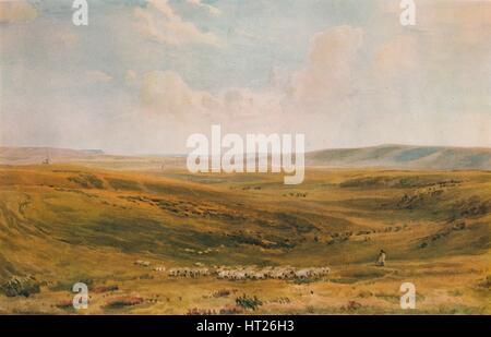 'The Downs near Lewes (Seaford Cliff in the distance)', c1887. Artist: Thomas Collier. - Stock Photo