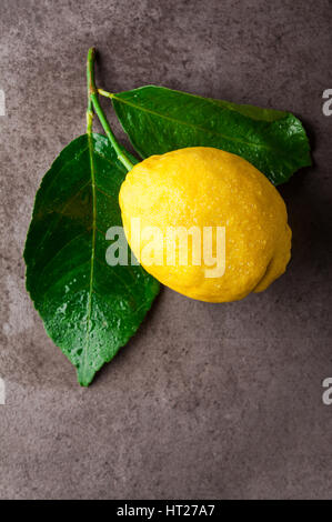 Fresh big natural lemon with leaves - Stock Photo