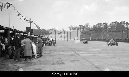Invicta leading a Riley 9 Brooklands in the JCC Double Twelve race, Brooklands, 8/9 May 1931. Artist: Bill Brunell. - Stock Photo