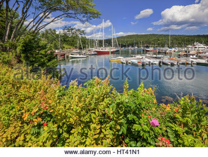 0902-1015  The inner harbor at Northeast Harbor, Mt. Desert Island, Maine.  Acadia National Park. - Stock Photo