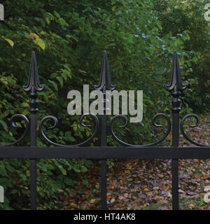 Forged black decorative wrought iron fence closeup, autumnal trees background, fallen leaves, horizontal large detailed - Stock Photo
