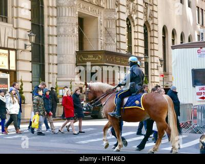 NYPD Mounted officers riding down Fifth Avenue passing pedestrians. Manhattan, New York City, New York, USA. - Stock Photo