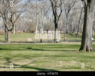 Central Park, New York City, New York, USA. March 2017 - Stock Photo