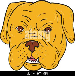 Illustration of a Dogue de Bordeaux, Bordeaux Mastiff, French Mastiff or Bordeaux dog, a large French Mastiff breed - Stock Photo