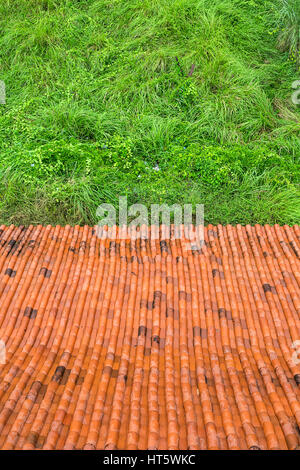 View from above at the carrot color roof tiles and the green grass behind them. Outdoors. Closeup. Vertical. - Stock Photo
