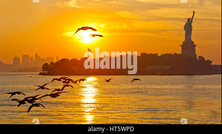 Sunrise and the Statue of Liberty and a flock of birds flying and New York City. - Stock Photo