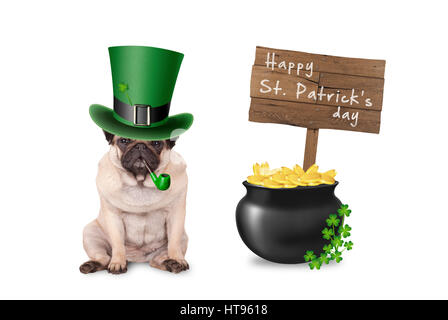 cute pug puppy dog with st. patrick's day hat and pipe sitting next to pot with gold, wooden sign and shamrock - Stock Photo
