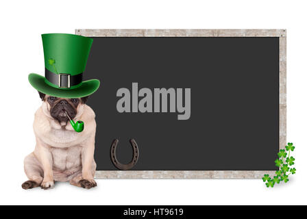 sweet smart pug puppy dog with st. patrick's day hat and pipe sitting next to blank blackboard sign with shamrock - Stock Photo