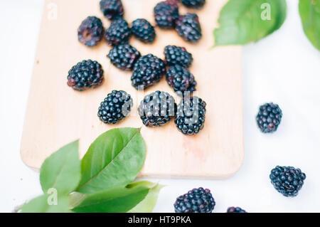 Fresh Summer Blackberries - Stock Photo