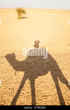 The shadow of a man riding a camel and taking a picture of his shadow on the barren desert ground. Thar Desert, - Stock Photo