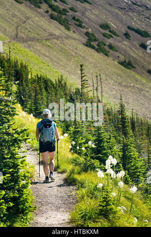 Female hiker on gravel trail along mountain side with wildflowers (beargrass) and hill side mountain trail in the - Stock Photo