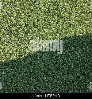 A green artificial astro turf texture commonly used in ball sports