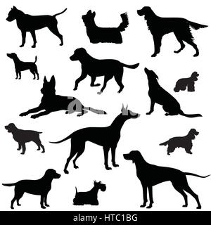 Dog set. pet sign collection. Animal vector silhouette - Stock Photo