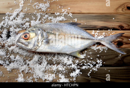 fresh bigeye trevally fish on wood and salt in dark sunlight - Stock Photo