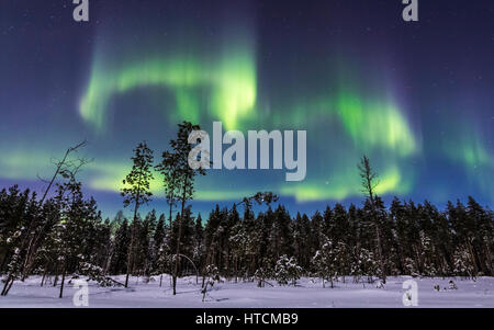 Snowy night in Finland - Stock Photo