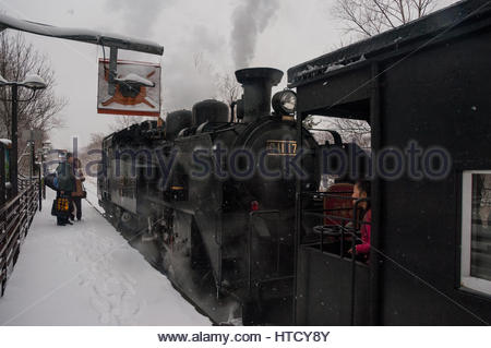 Japanese steam special in Hokkaido winter with a Class C11 tank locomotive at Kushiro Shitsugen station - Stock Photo