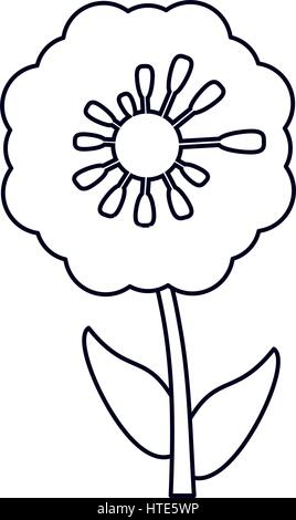 pansy flower decoration line - Stock Photo