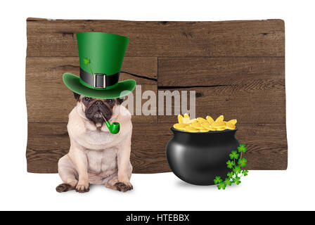 sweet pug puppy dog with st. patrick's day hat and pipe sitting next to pot with gold and shamrock, on wooden background - Stock Photo