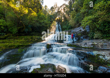 Hiker at McLean waterfall, Sun Star, The Catlins, Otago, Southland, New Zealand - Stock Photo