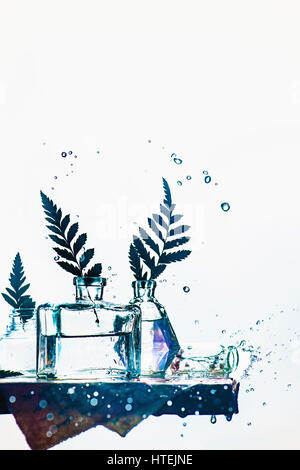 Leaves in glass bottles on a shelf with water splashes and drops on a white background - Stock Photo
