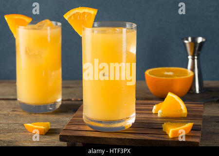 Homemade Alcoholic Gin and Juice Cocktail with Orange and Grapefruit - Stock Photo