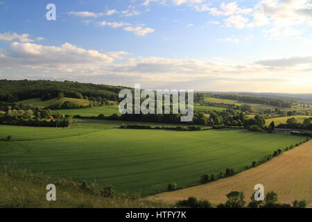 A view of Wiltshire countryside, woods and fields in summer. - Stock Photo