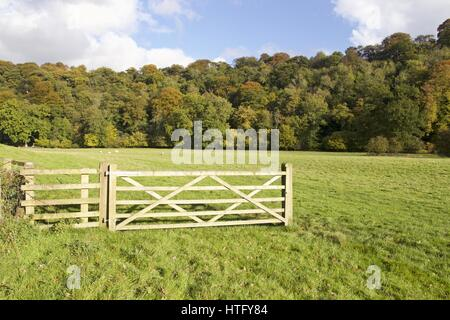 Someones taken offence! A gate in a grass field with woodland behind, but with no fence next to the gate. - Stock Photo
