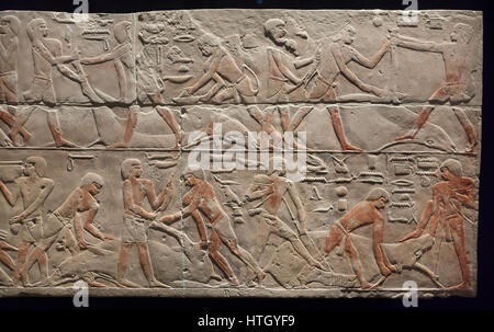 Cattle butchering scene. Egyptian limestone relief from Saqqara, about 2300 BC, 5-6th Dynasty, Old Kingdom of Ancient - Stock Photo