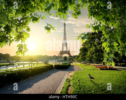 Jardins du Trocadero near Eiffel Tower in Paris, France - Stock Photo