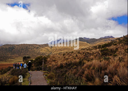 Cotopaxi, Ecuador. 15th Oct, 2016. Out and about in the 4000 metre high Cotopaxi National Park, which is above all - Stock Photo