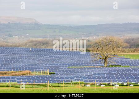 A solar farm on a sunny day in the Vale of Glamorgan, near Cardiff. - Stock Photo