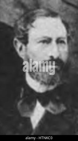 Auguste Lupin - Stock Photo