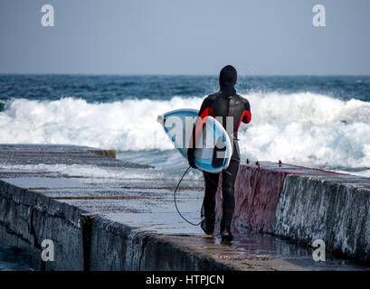 Surfer walks into water wearing a wetsuit in winter. Cold surfing. Wave splash. waterproof suit - Stock Photo