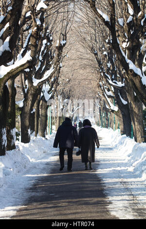 Bucharest, Romania - January 15, 2017: Rear view of an old couple wearing black clothing and walking on the snowy - Stock Photo